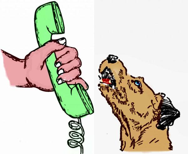 when-dog-bark
