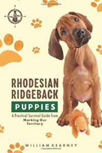 Rohdedsian Ridgeback Pupies
