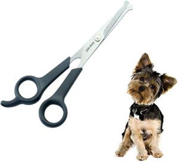 dog-scissors
