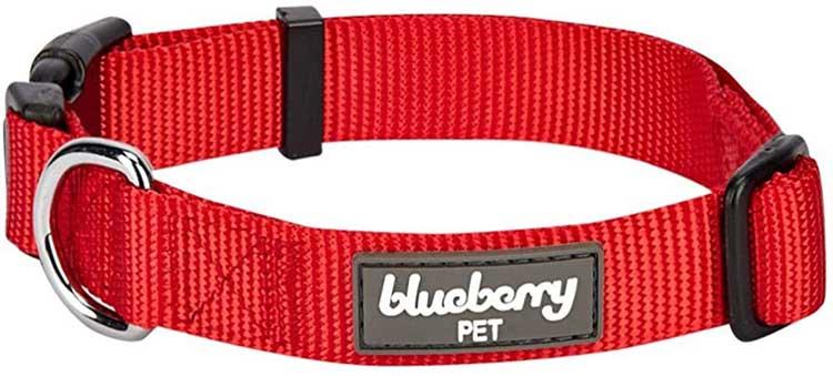 Blueberry-dog-collar