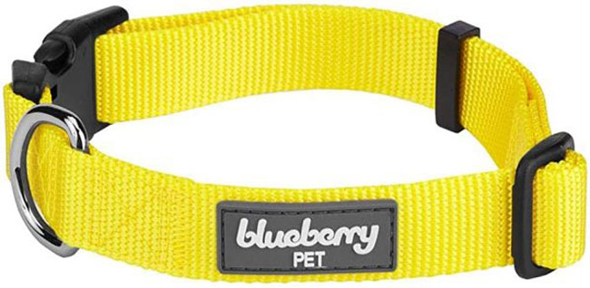 Blueberry-pet-collars-for-Dog