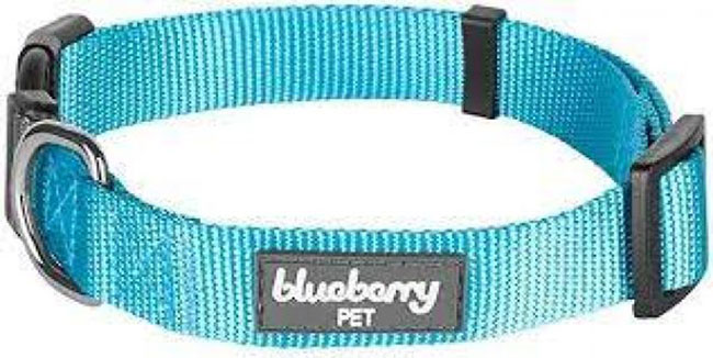 Blueberry-pet-collars-for-Dogs