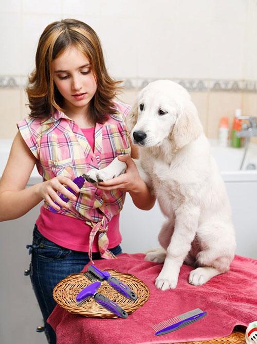 Dog-Nail-Grinder