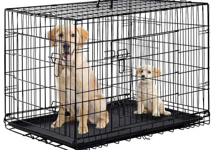 XL-Dog-Crate