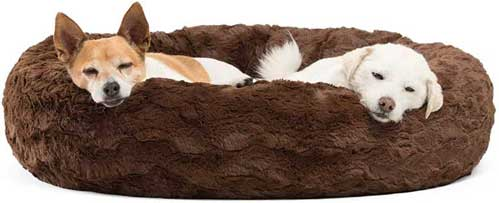 Best-Friends-bed for dog