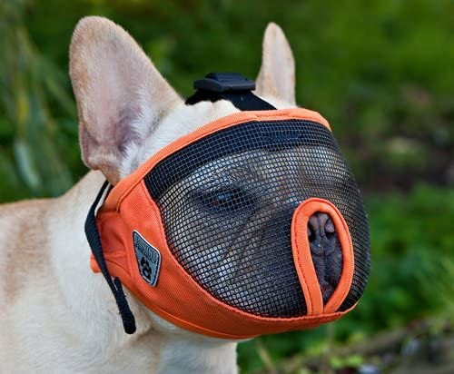 Canine Friendly Short Snout Dog Muzzle