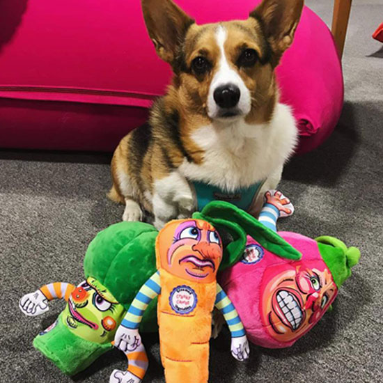 Fuzzu-Broccoli-Dog-Chew-Toy