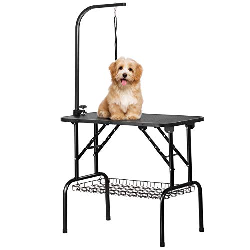 Gravitis Foldable Pet Grooming Table
