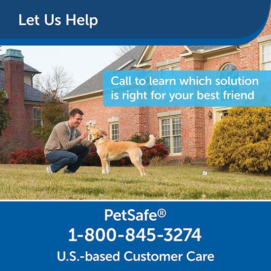 PetSafe-Stay-and-Play-Wireless-Dog