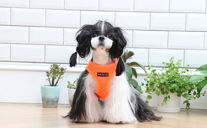 Puppia-Harness-review