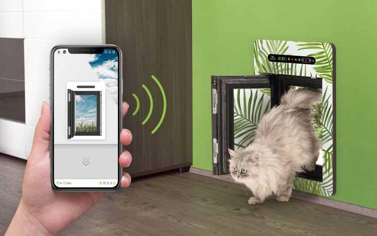 Electronic-Doggie-Door