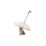 Enjoying Pet Umbrella Dog Leash