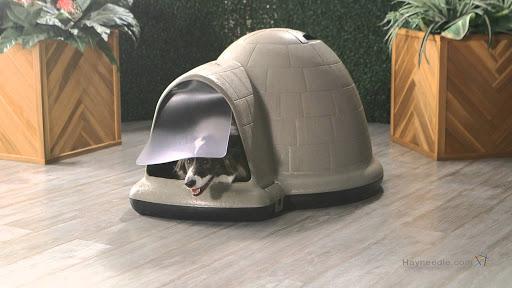 Indigo Dog Heated House