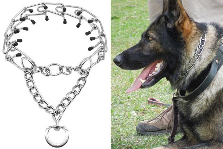 Pinch-Dog-Collar