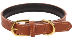 AOLOVE BASIC CLASSIC PADDED LEATHER COLLAR