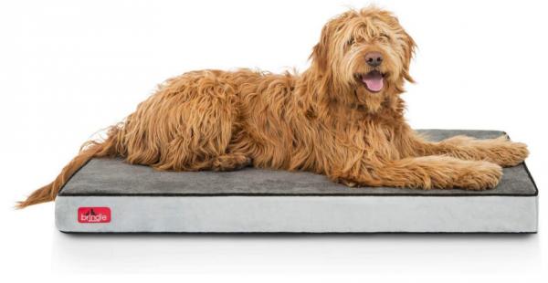 Brindle Waterproof Designer Memory Foam Pet Bed