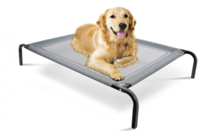 Paws & Pals Elevated Dog Bed