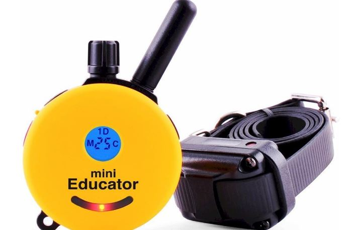 Educator ET-300TS Mini E-Collar Remote Trainer System