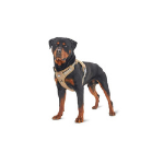 Auroth Dog Harness