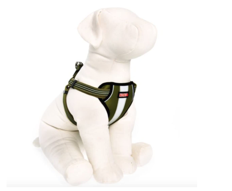 how to put on a kong dog harness