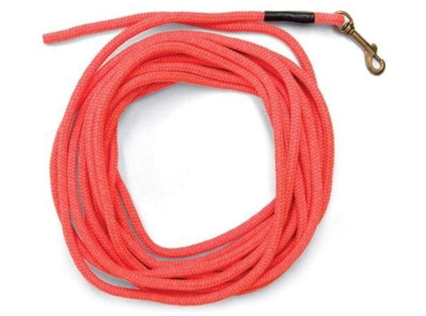 dog cable
