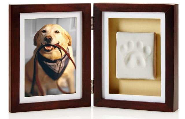 paw print and frame