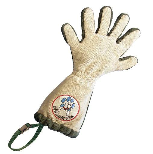 spotless glove