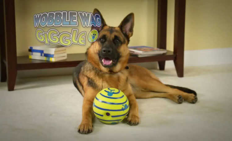 Wobble-Wag-Giggle-Ball-Review