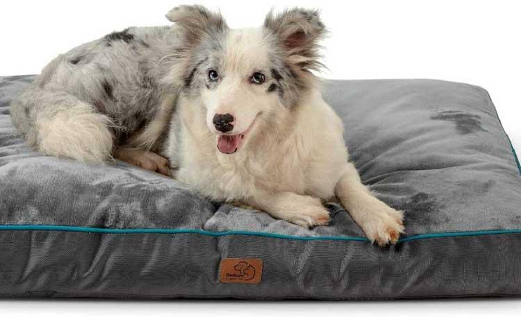 Top-8-Bedsure-Waterproof-Dog-Bed