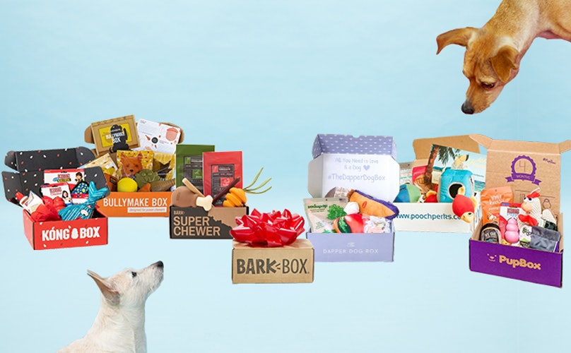 Best Pup Boxes