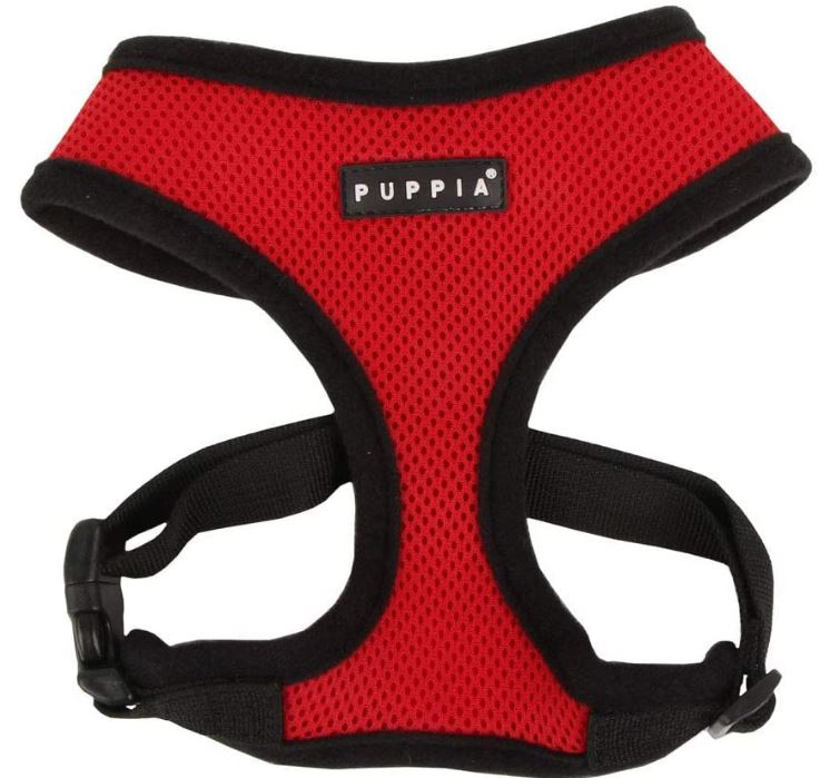 dog harness for car rides